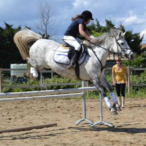 Poney Club des Tours - Chateaurenard - Rando Poney ST Remy de Provence